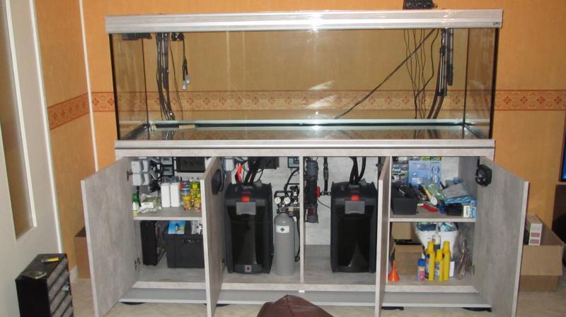 Création nouvel Aquarium amazonien 830 litres  - Page 5 Img_4383-4b496c0