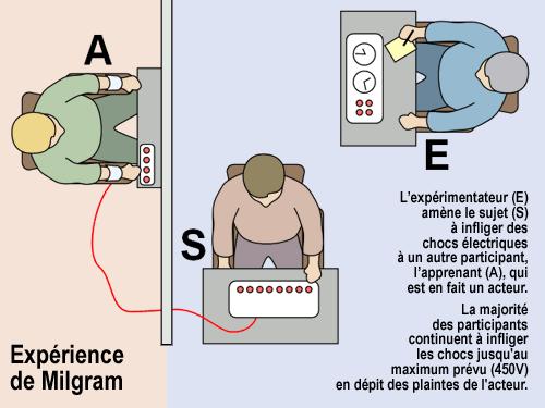 Fil de blagues sur les surdoués, les psy et quelques autres - Page 3 Milgram-4ca4d45