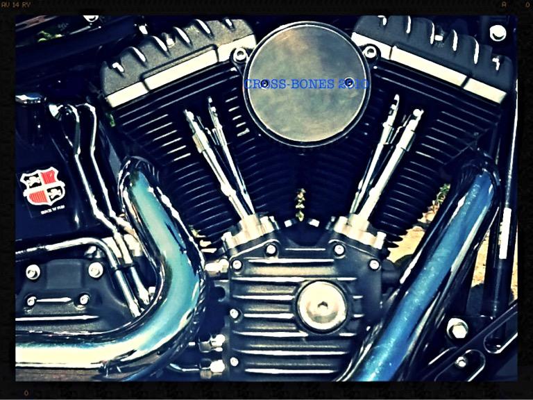 CROSSBONE uniquement - Page 34 Image-4dd4bea