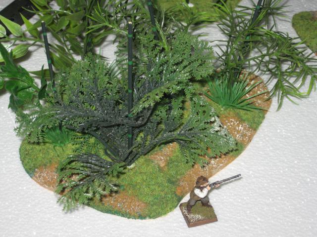 VENDU végétation luxuriante 1 Img_0352-50304a8