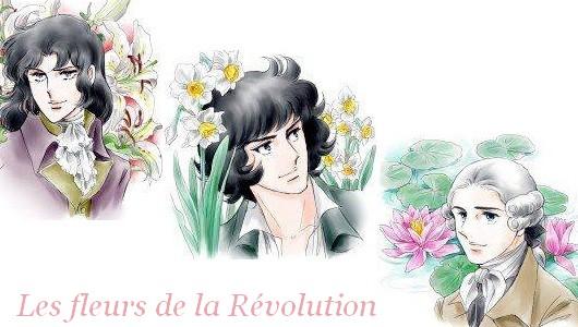 mes kits LO - Page 2 Sign-revolution-51b6f32