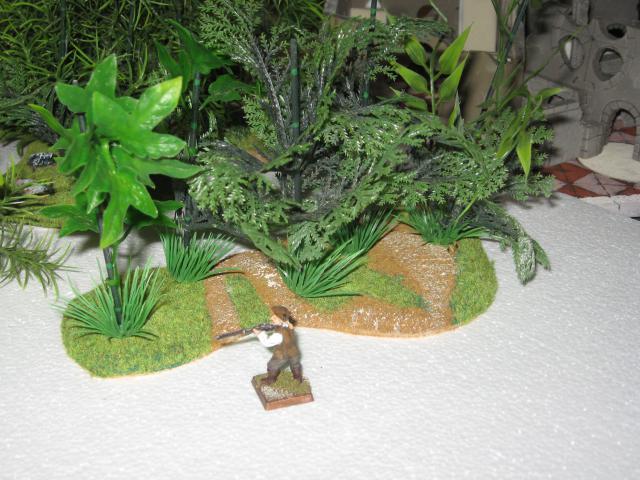 VENDU végétation luxuriante 2 Img_0358-50304dd