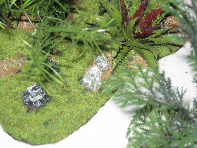 VENDU végétation luxuriante 1 Img_0349-5030495