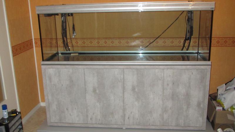 Création nouvel Aquarium amazonien 830 litres  - Page 5 Img_4379-4b496a0