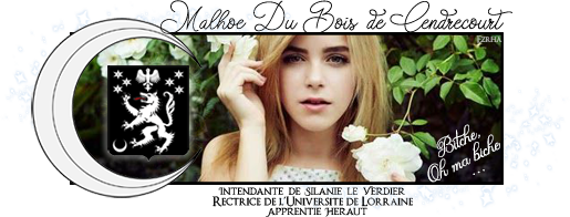 [RP - Candidature] Quand Blondie teste ... Banniere-malhoe-bdbc-2-56fcb9b