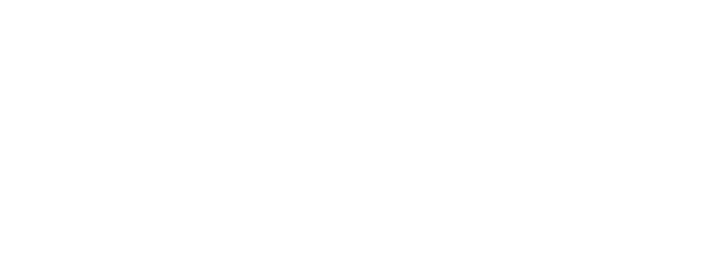 The Legend of Hyrule