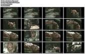 Naked Celebrities  - Scenes from Cinema - Mix - Page 3 Ol7tz3juajzb