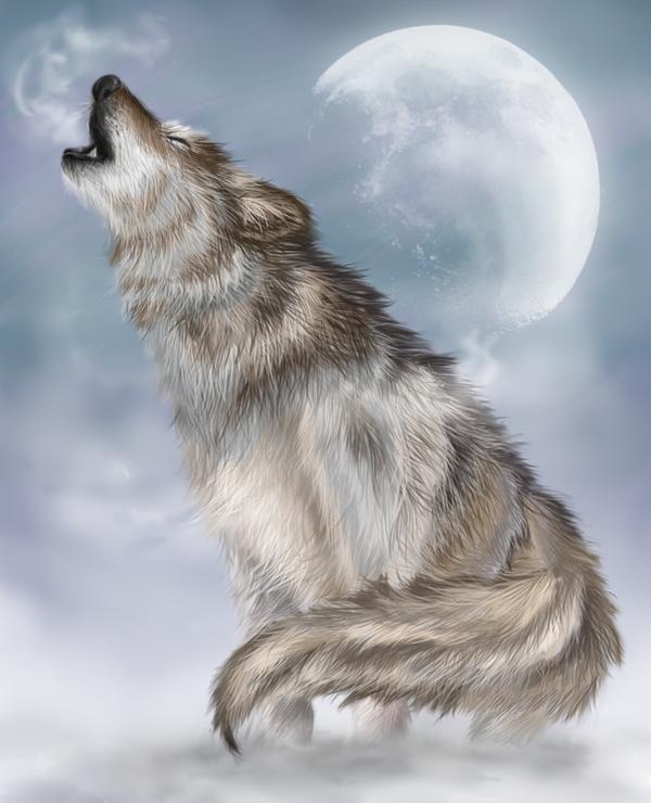 [B-Rang Nukenin] Midori Yoshio Snow_wolf_by_swift_chaos