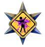 Médailles de Halo Reach (Perfection/Medals) - Page 10 Th_26890_Conducteurdudimanche_122_78lo