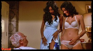 Pam Grier, Sally Ann Stroud and Sharon Kelly - Foxy Brown (1974) 720p Ir43z9lv6swj