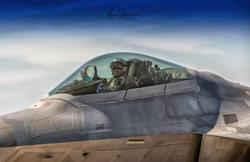 F-22 Raptor: News and Discussion - Page 8 Th_749663350_F_22_detail_122_808lo
