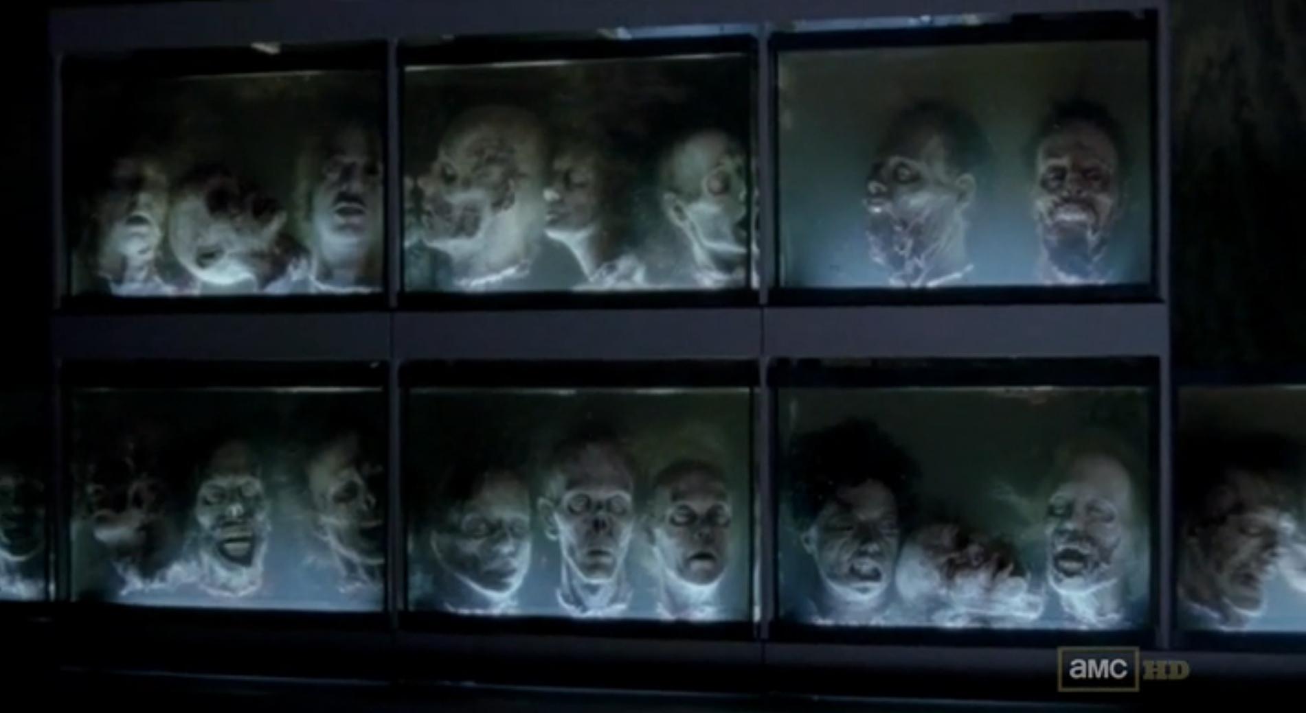 The Walking Dead  Walkersmany
