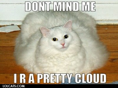 panda contraception thread LOLCATS-Cloud