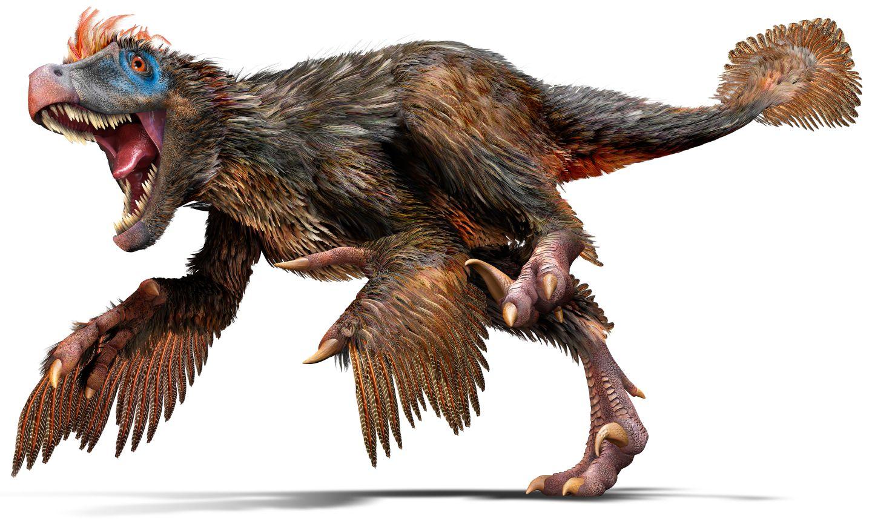 ¡Feliz cumpleaños, Galiಠth! Velociraptor_u4hjbq