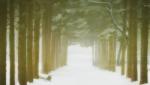 [ANIME] Winter Sonata Winter-sonata-7-1640fc1