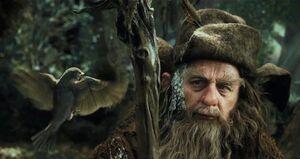El Hobbit - Página 14 300px-Radagast-bird