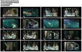 Naked Celebrities  - Scenes from Cinema - Mix Hj77vr8z5byb
