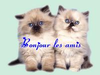 Vendredi 04 Mars Bonjou14-18ad680