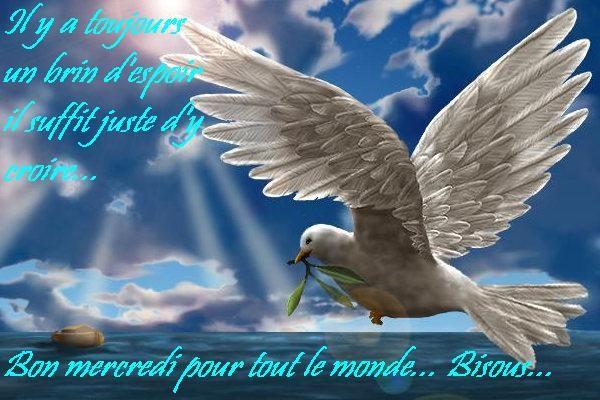 Mercredi 27 Juillet Bon-mercredi-5acc2c-1dd215c