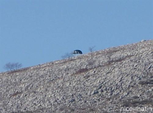 Ovni du Col de Vence  une zone de canulars fréquents - Page 7 Nicematin-e9a5d9