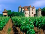 Wallpaperi Th_40363_Vineyard4_Cahors7_Lot_Valley5_France_122_1045lo