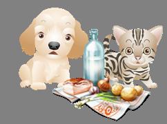 Aliments toxiques pour les chiens et les chats Aliments-dangereux-236d12b