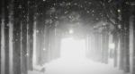 [ANIME] Winter Sonata Winter-sonata-6-1640fa4