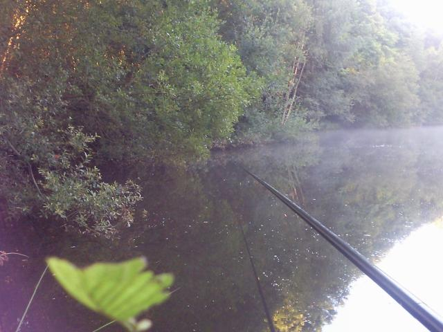 Pêche en haute vienne, la bénéchie ( cussac, chalut) Photo0036-121f74e