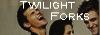 Twilight Saga Bouton-1d8e683
