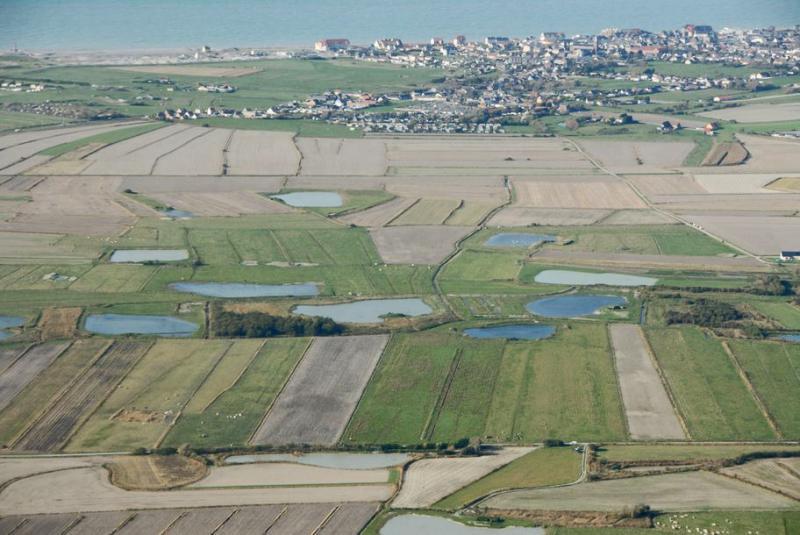 Valenciennes - Baie de Somme Dsc_3998-75da60