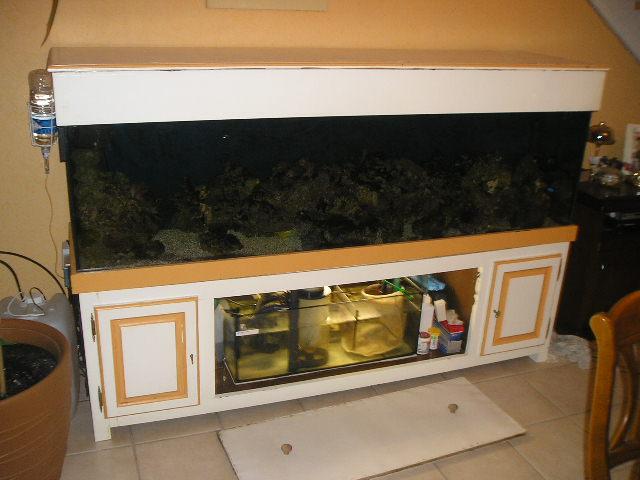 Vends Aquarium 600 Litres [terminé] Pb300057-88fdc2