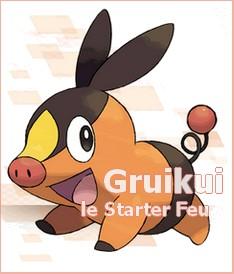 [Nintendo] Pokémon tout sur leur univers (Jeux, Série TV, Films, Codes amis) !! - Page 5 Gruikui-22c5196