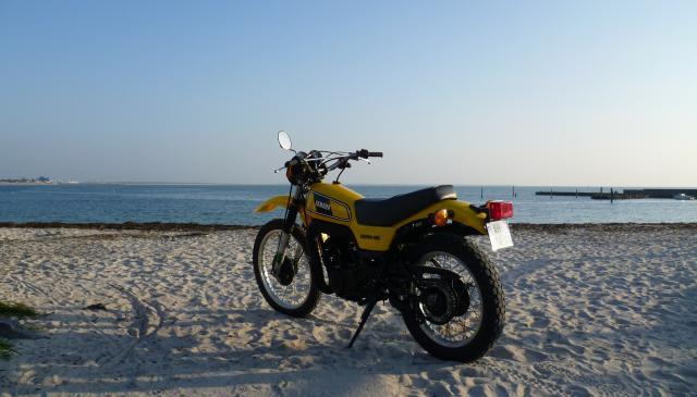 photo dtmx jaunes P1000651-2693fb4