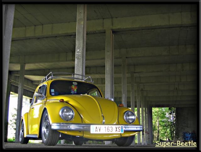 My Yellow Bug. 527025011-27e7e01