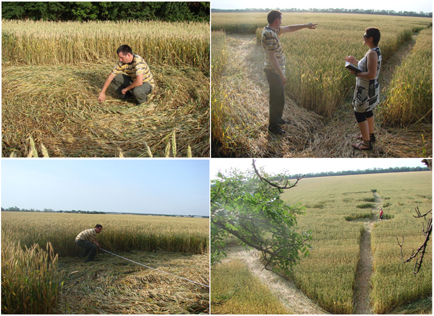 Crop Circle 2010 - Page 16 Russe-01-22a6715