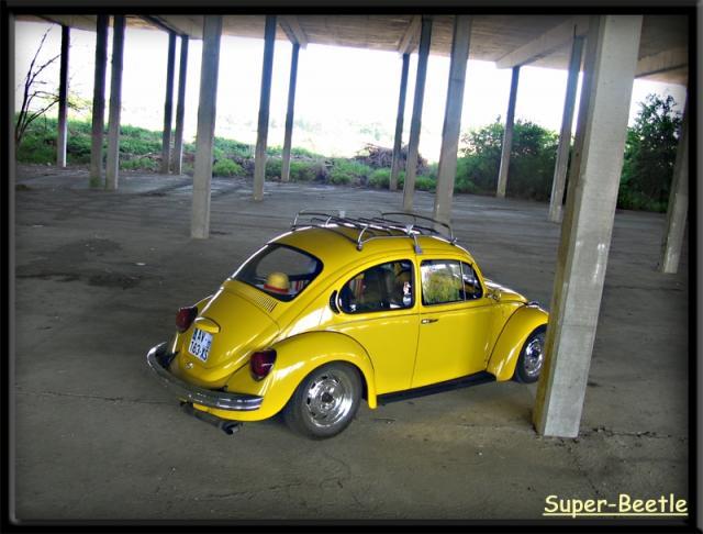 My Yellow Bug. 3616099331-27e7e1e