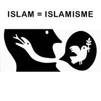 Pourquoi le monde doit combattre la charia comme il avait combattu l'Apartheid et le nazisme ? - Page 23 Islam-islamisme-4535cf5