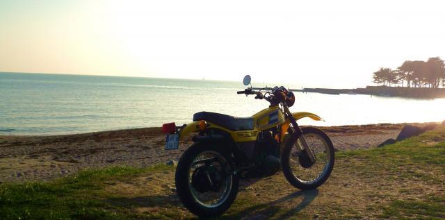 photo dtmx jaunes P1000650-26952d8