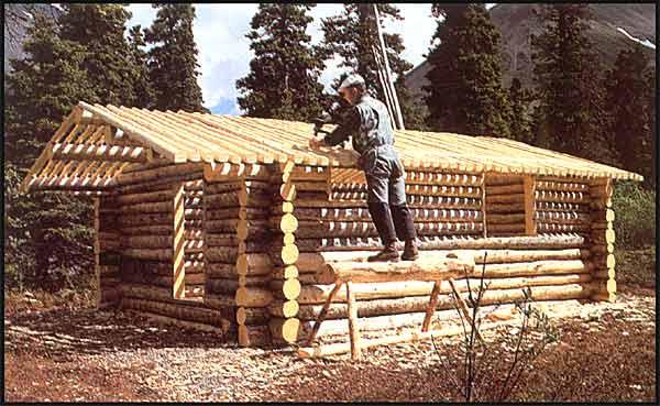 Dick Proenneke, 30 ans seul en Alaska Cabane-2464785