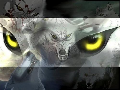 wolf Wolf-2723bec