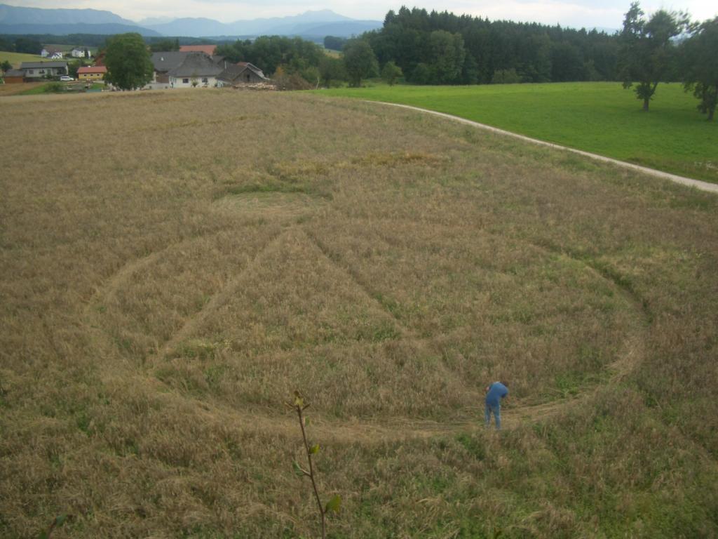 Crop Circle 2011  - Page 15 Autriche-01-2e6e136