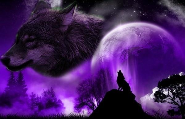 Les Loups de Sirius