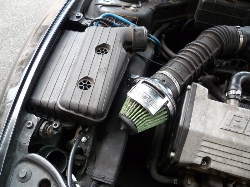 Câble dans gaine verte sectionné P1000560-1-316b345