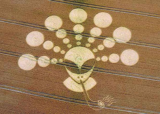 Crop Circle 2011  - Page 13 Gb927-2b42312