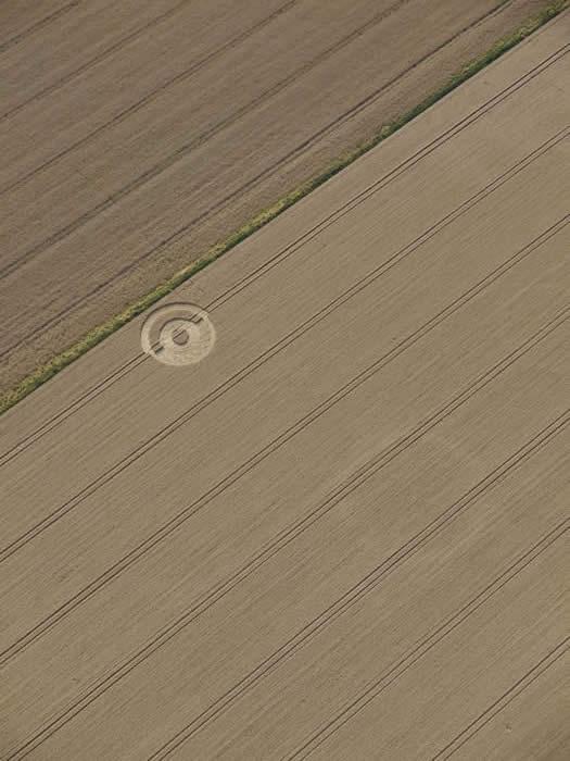Crop Circle 2011  - Page 13 Gb931-2b6dd78