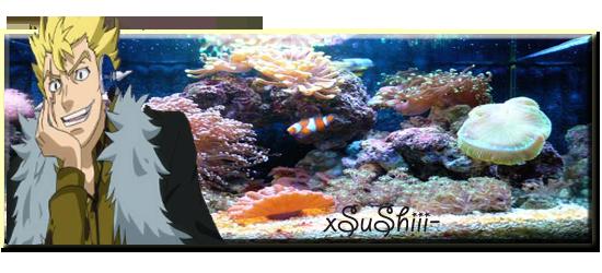 Antoine's shrimps & shrimproom - Page 7 Aaazezapoisson-34a53a2