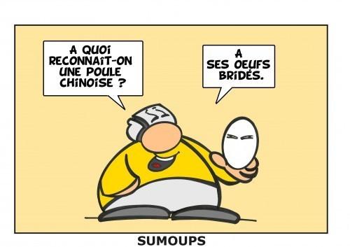 Humour et Politique - Page 38 3-sumoups-369dd1a