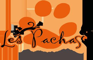 L'association les pachas (35) Logo-les-pachas-site-2623b03