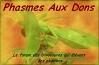 Classement alphabétique des fiches d'élevage Phasmes-aux-dons-3d5d49a