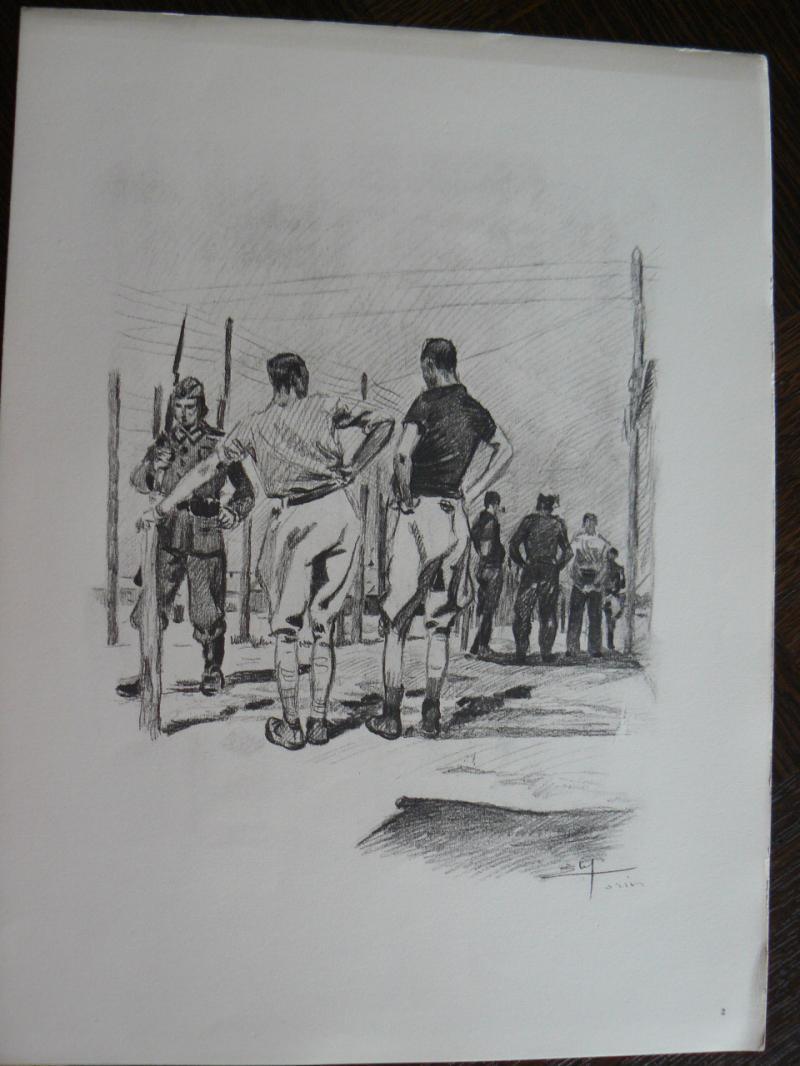"""3 séries de """"dessins de captivité"""" P1090061-42b0a26"""